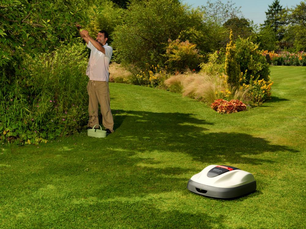 robot koszący trawę